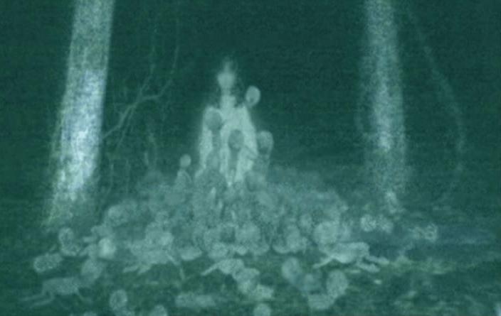 Noční kamera
