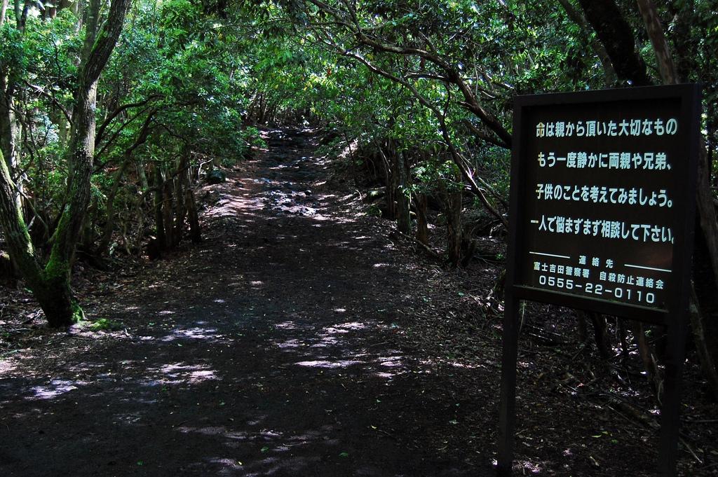 Výsledek obrázku pro Aokigahara